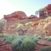 kings-canyon-16