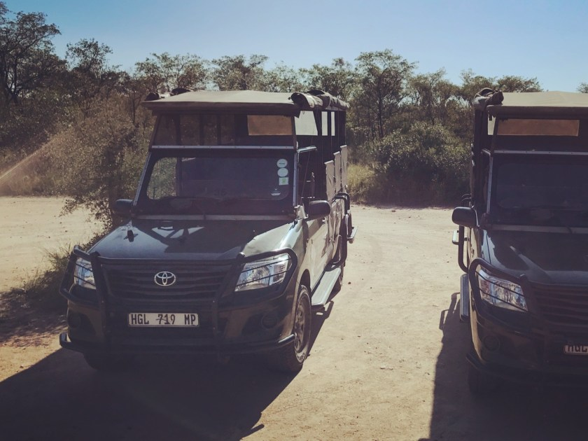 South Africa, Kruger - Safari 1