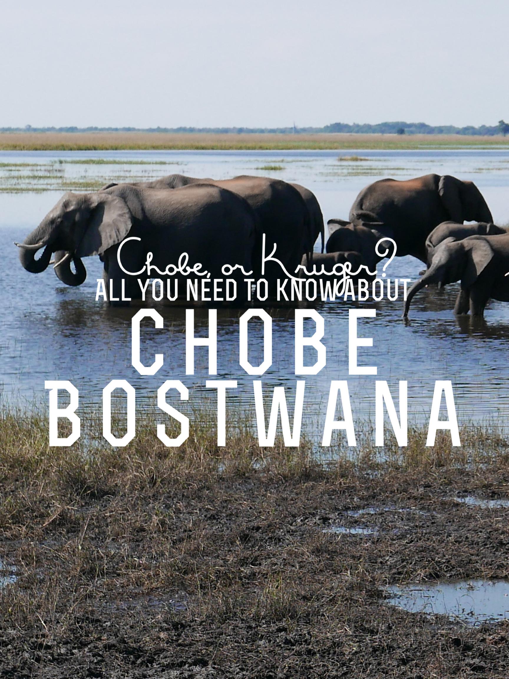 Chobe, or… Kruger?