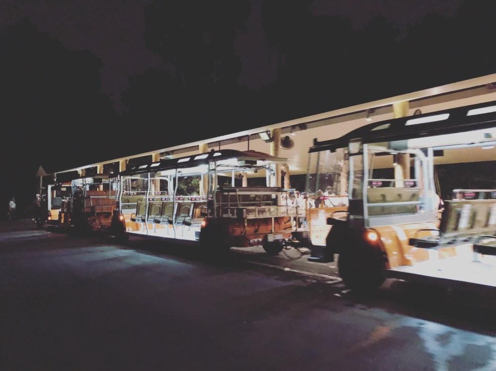 Ngiht Safari 6 - Tram