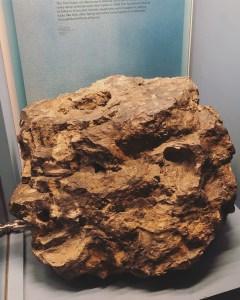5 Drumheller - Royal Tyrrell Museum 8