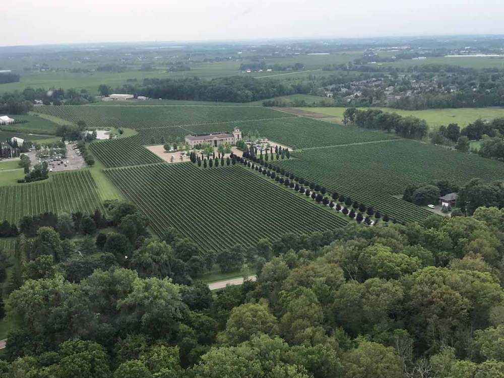 5 Wineries of Niagara on the Lake
