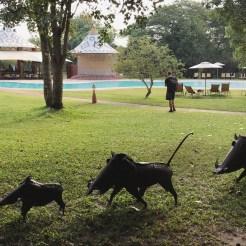 AVANI Victoria Falls Resort 2