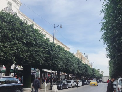 4 Downtown Tunis 5