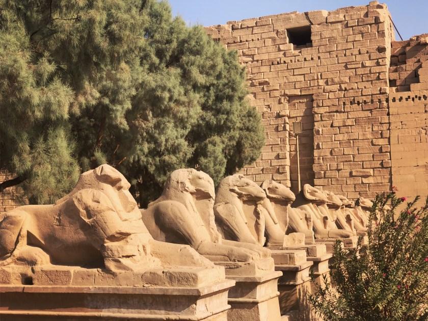 Ram-headed sphinxes / First Pylon