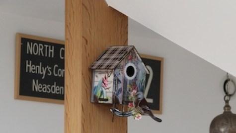 maison oiseaux7