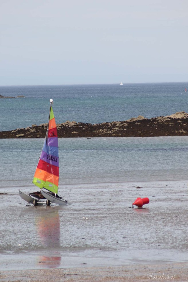 3rainbow sail