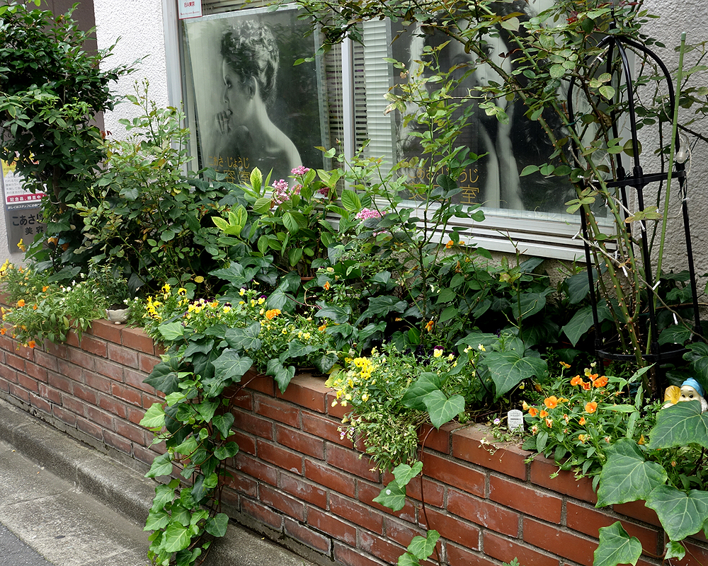 美容室の花壇