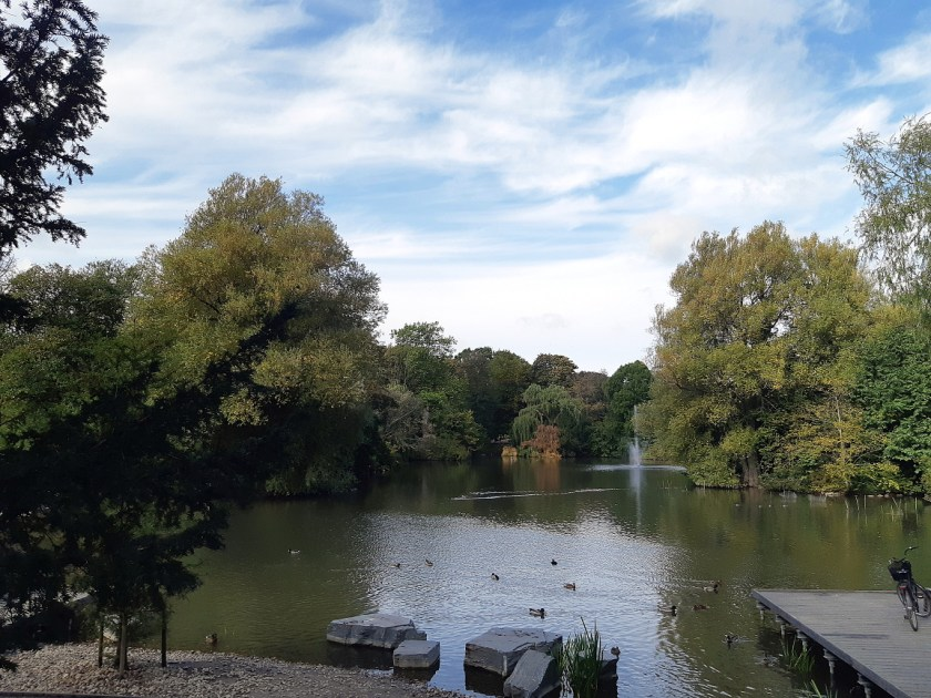 A duck pond surrounded by trees under a bright blue sky with fluffy clouds.