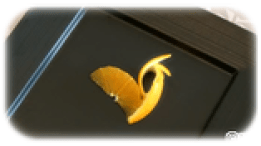 オレンジ羽根完成品-thumb-160xauto-9845
