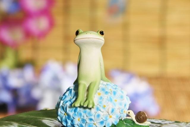 ドラマ『監察医朝顔』3話のゲスト三船海斗の役は何?あらすじや感想も!