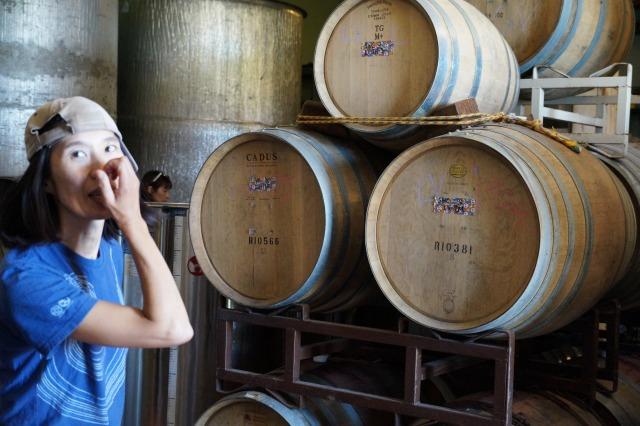 レッドさんと行く、オレゴンワインカントリー!