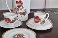 スージークーパー ナスタチューム パターン コーヒーポットとトリオのセット 8
