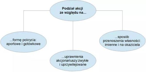 Charakterystyka papierów wartościowych - podział akcji