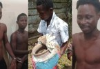 Driver Caught Transporting Human Bones 2 Fetish Priest - Watch Below