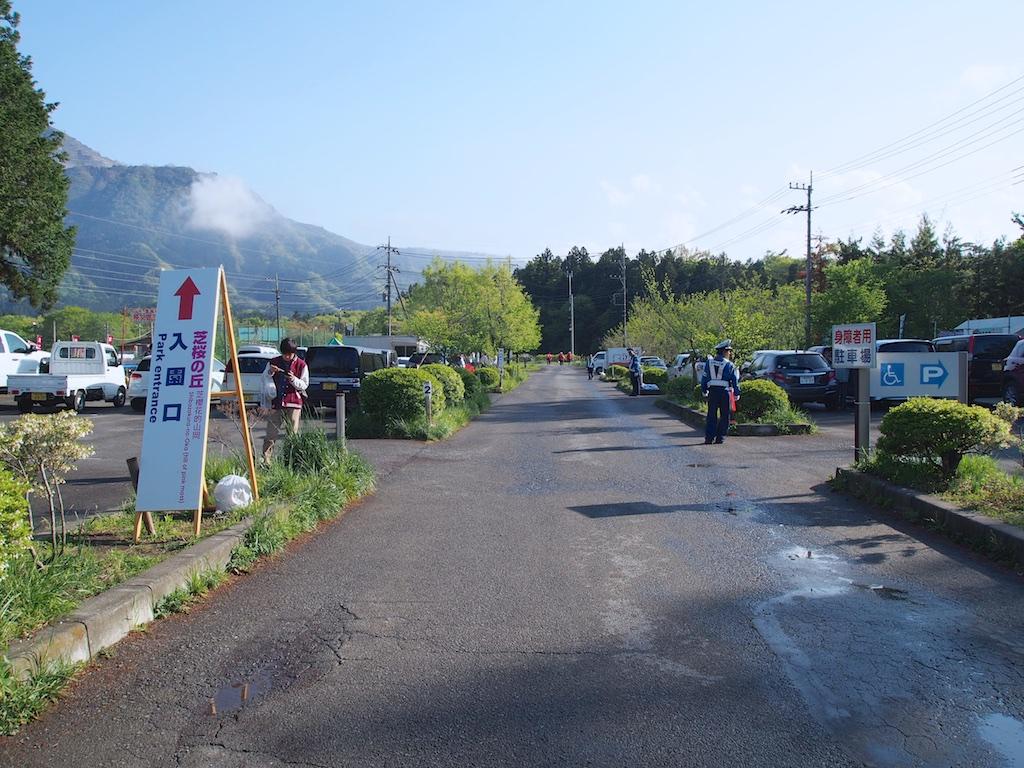 Chichibu Shibazakura Matsuri