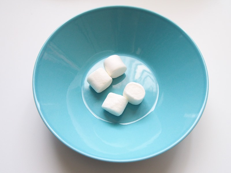 Marshmallow Fondant