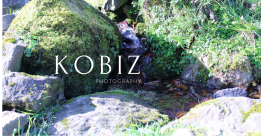 kobiz (1)