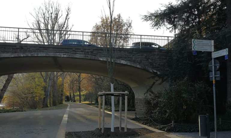 Koblenzer Fahrradtag kritisiert Baumpflanzung auf Radweg