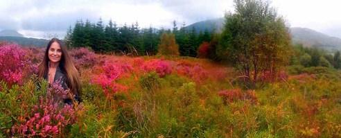 My piece of land In Glencoe Woods