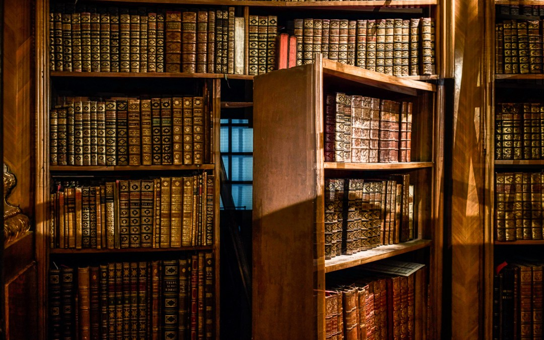 Why Library Discovery is the Best Discovery