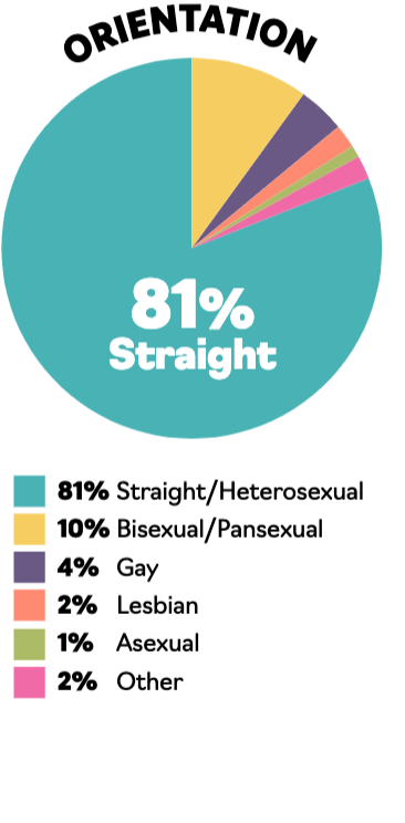 A piechart illustrating the sexual orientation of publishing employees: 81% straight; 10% bi/pansexual; 4% gay; 2% lesbian; 1% asexual; 2% other