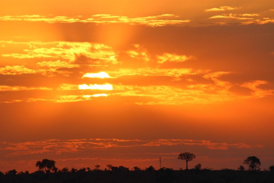 Vue d'ensemble d'un paysage en Tanzanie