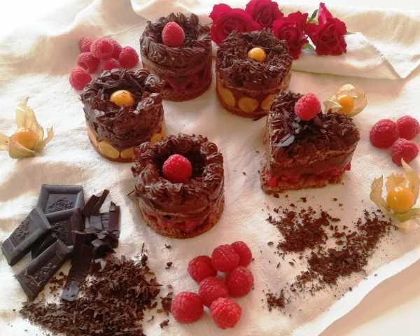 Schokoladen - Biskuit mit Schokolade , Ganache , Himbeeren und Physalis