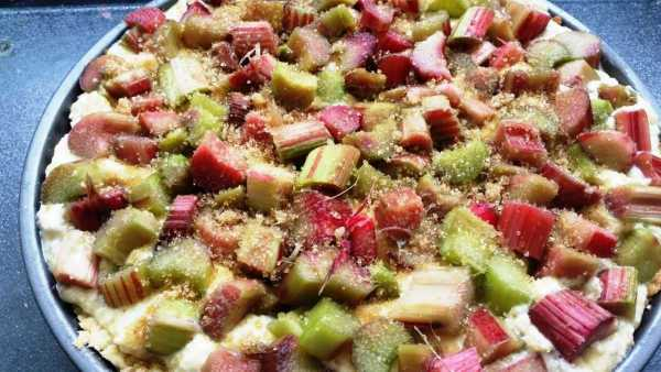 rhabarberkuchen- mit- ricotta-