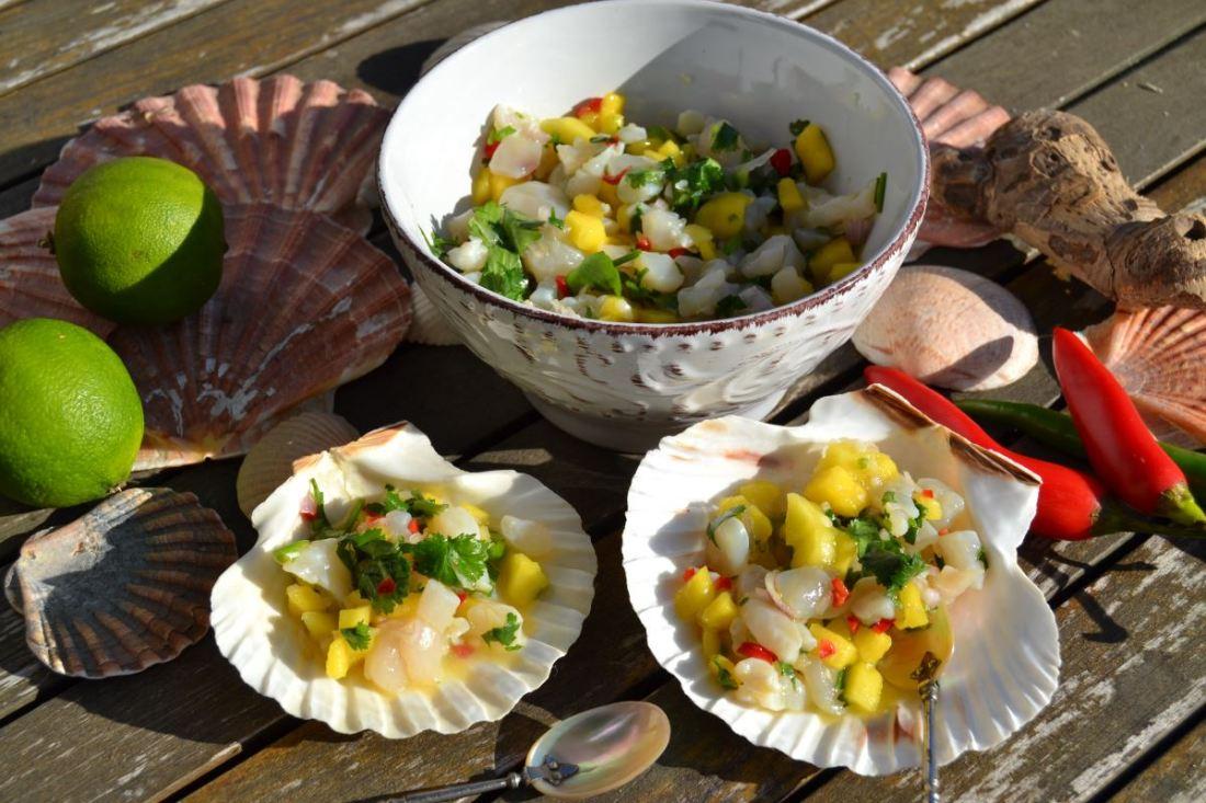 jakobsmuschel-ceviche-mit-mango-kochen-aus-liebe