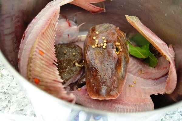 Fischkopf und Gräten für Fischfond Rezept