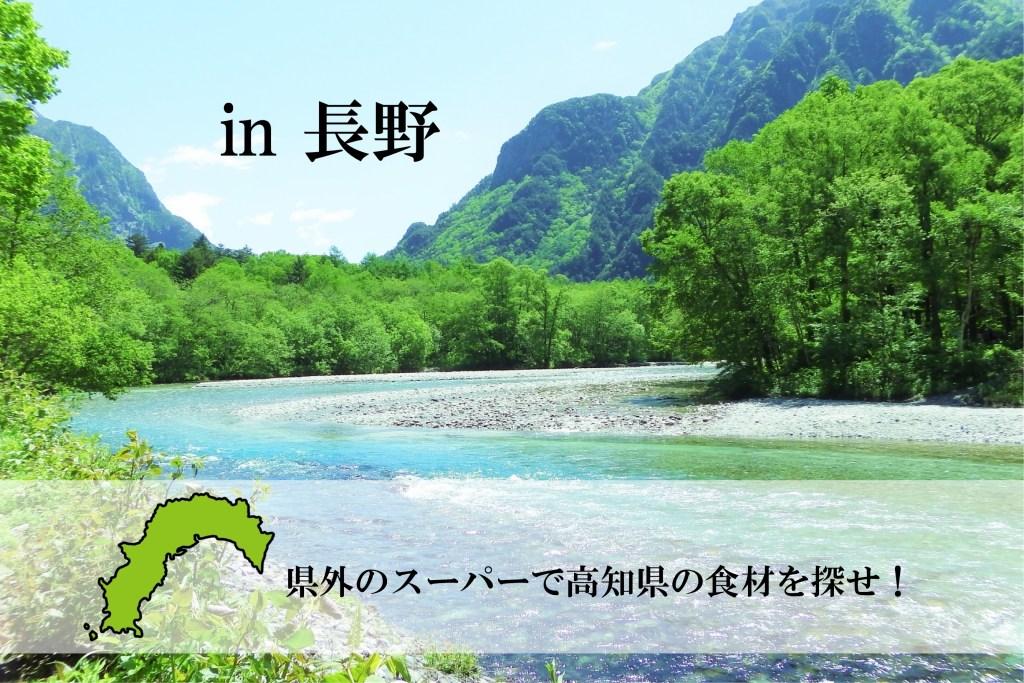 【調査】高知県の食材は県外のスーパーでどれくらい売られているのか調べてみた!in 長野