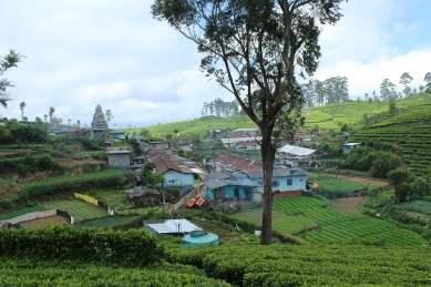 Eine kleine Siedlung in den Teeplantagen