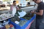 Kräutervorräte aufstocken auf dem Markt