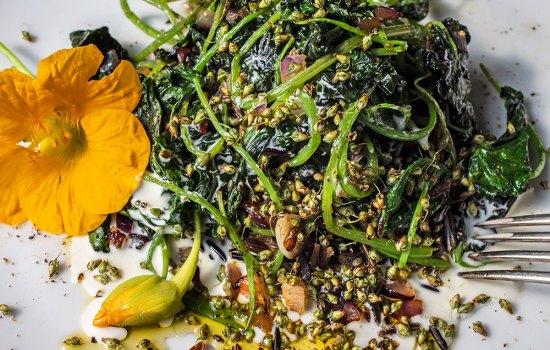 Kapuzinerkresse-Gemüse
