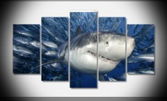 4602-animals-sharks-fishes-water-underwater-sea-font-b-life-b-font-font-b-ocean-b
