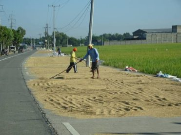 Farmers are forced to use the roads to dry their crops because of lack of facilities. Photo by Lito Ocampo, used with permission