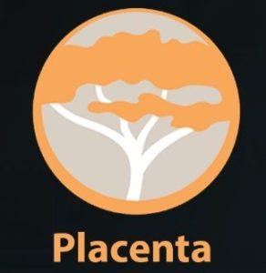 Placenta logo