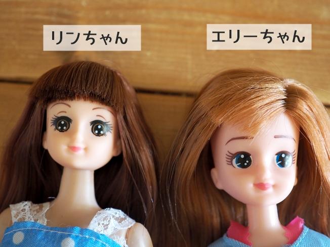 エリーちゃんとリンちゃんの特徴比較まとめ お顔のアップ