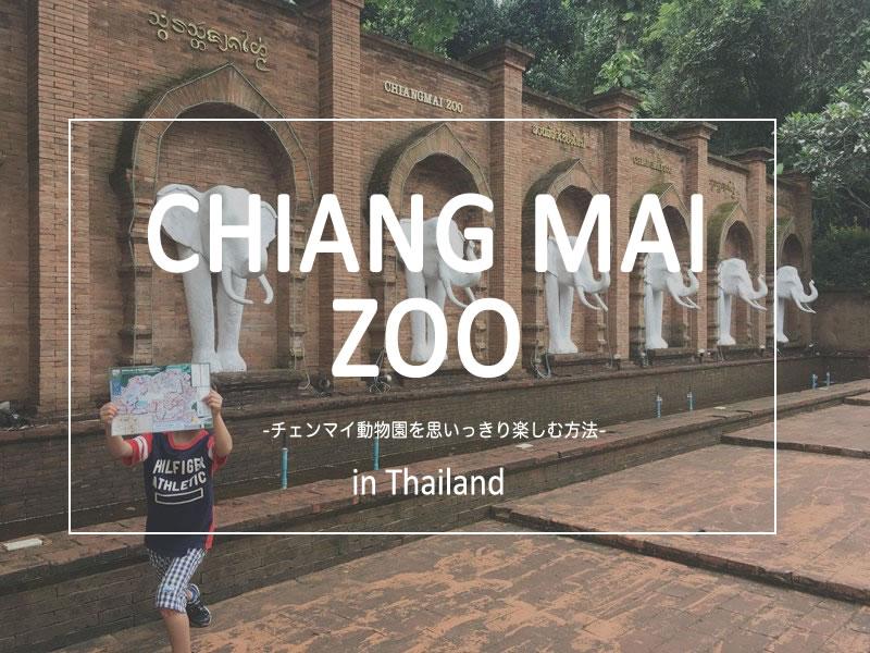 チェンマイ動物園で子供と楽しむ方法