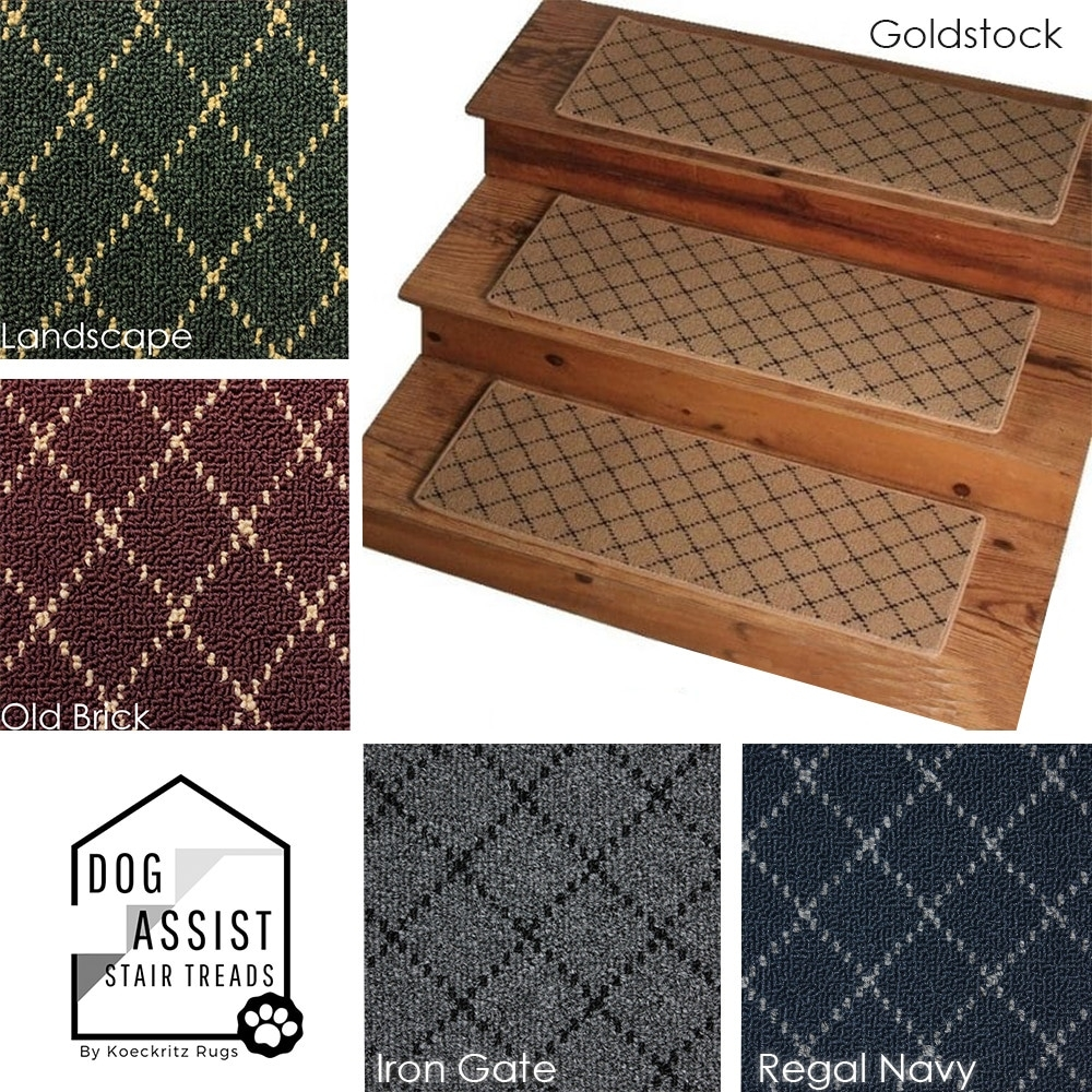 Ansley Park Omega Dog Assist Carpet Stair Treads | Best Carpet Stair Treads | Rug | Mat | Treads Lowes | Bullnose Stair | Wood Stairs