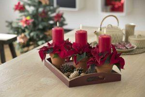 2017 Weihnachtsstern Tischdeko 05
