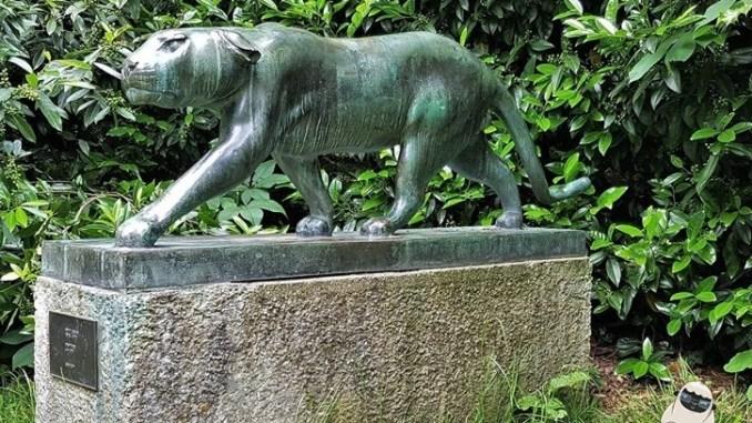 Südpark Panther