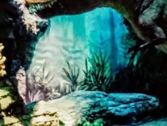 Das Odysseum in Kalk