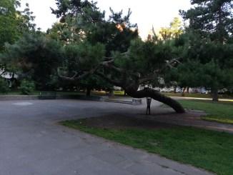 Der Römerpark in der Südstadt