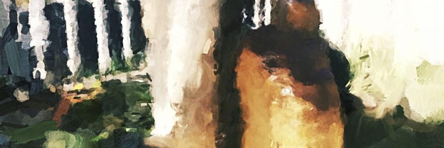 Der kleine Wasserfall am Stein, beruhigendes Element im Innenhof