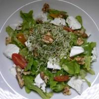 Sommeressen: grüner Salat mit Ziegenkäse und Honig-Senf-Dressing