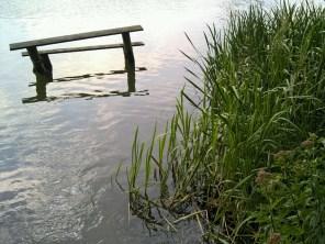 4. A lake