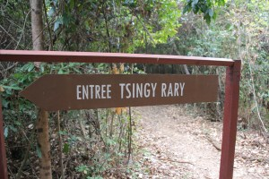 21 tsingy (2)