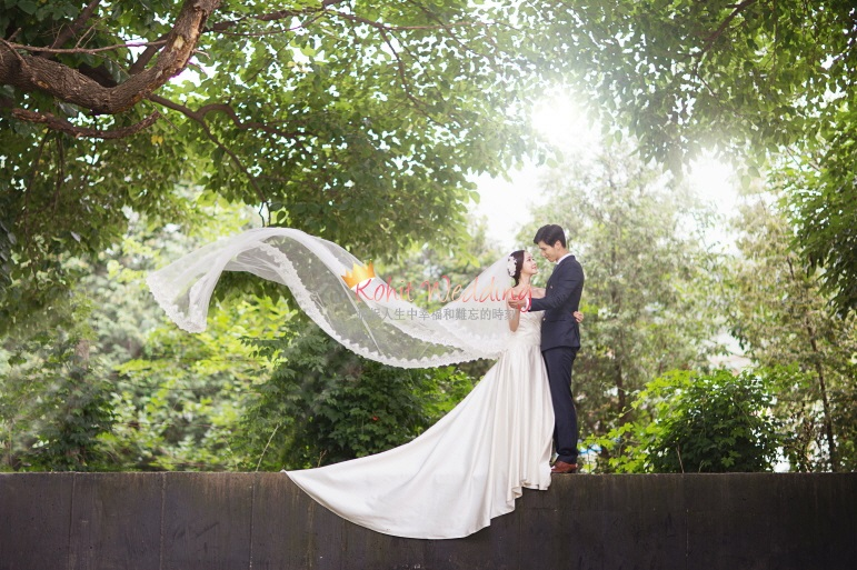 Korean wedding photos Nadri - Kohit Wedding